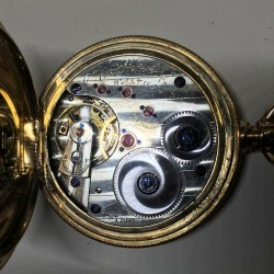 Waltham Grade Amn. Watch Co. Pocket Watch