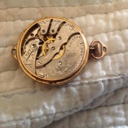 Hampden Grade Molly Stark Pocket Watch