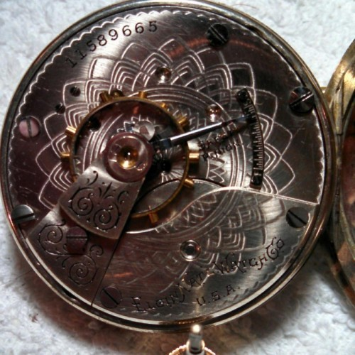 Elgin Grade 287 Pocket Watch Image