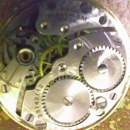 Waltham Grade No. 561 Pocket Watch Image