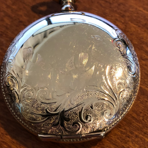 Elgin Grade 295 Pocket Watch Image