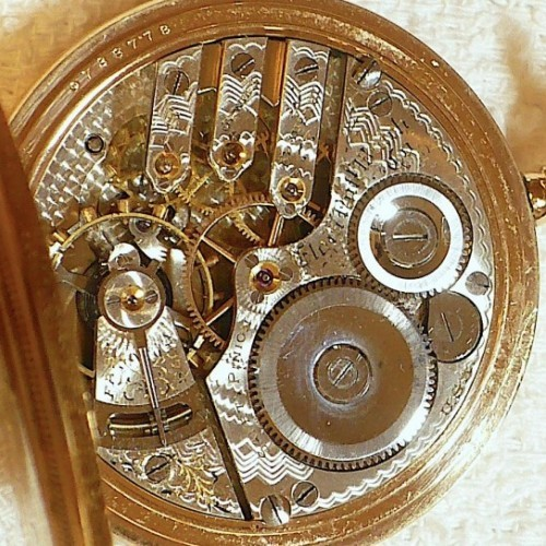 Elgin Grade 242 Pocket Watch Image