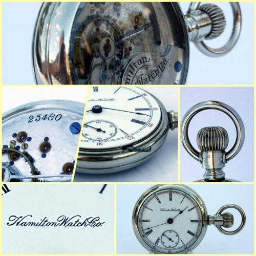 Hamilton Grade 931 Pocket Watch Image