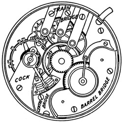 Elgin Pocket Watch #700491